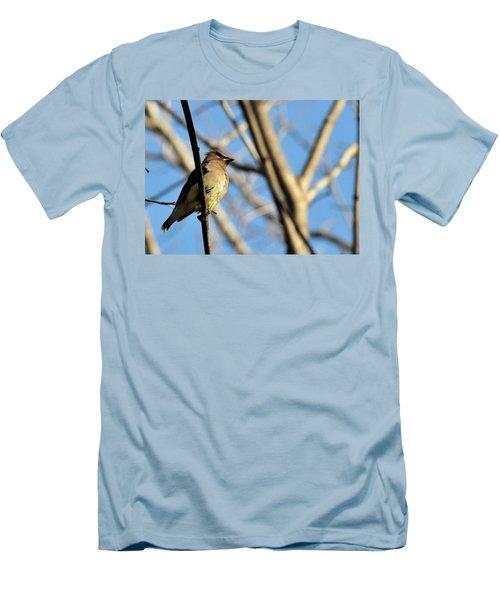 Cedar Wax Wing Men's T-Shirt (Slim Fit) by David Arment