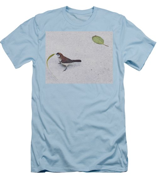 Owl Finch With Leaf Men's T-Shirt (Slim Fit) by Sandy Taylor
