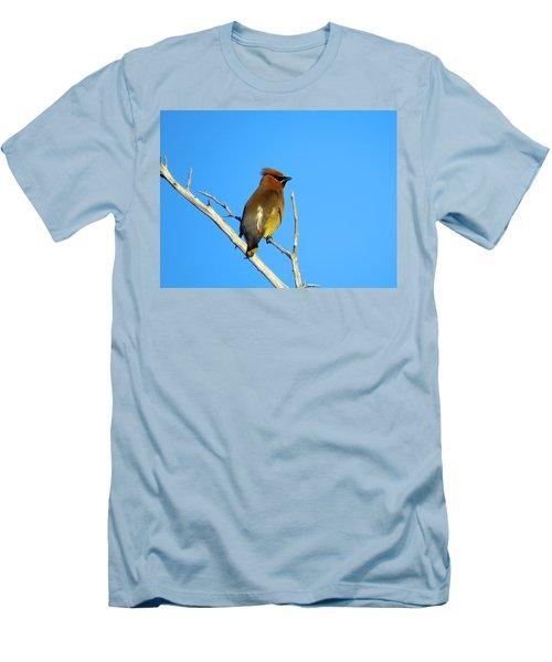 Cedar Waxwing Men's T-Shirt (Slim Fit) by Dianne Cowen