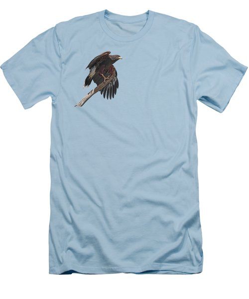 Harris Hawk - Transparent 2 Men's T-Shirt (Slim Fit) by Nikolyn McDonald