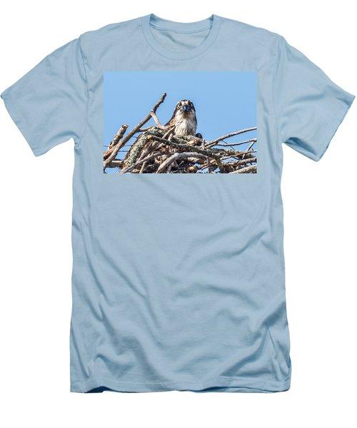 Osprey Eyes Men's T-Shirt (Slim Fit) by Paul Freidlund