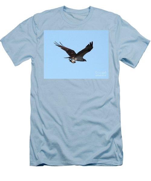 Osprey With Fish Men's T-Shirt (Slim Fit) by Carol Groenen