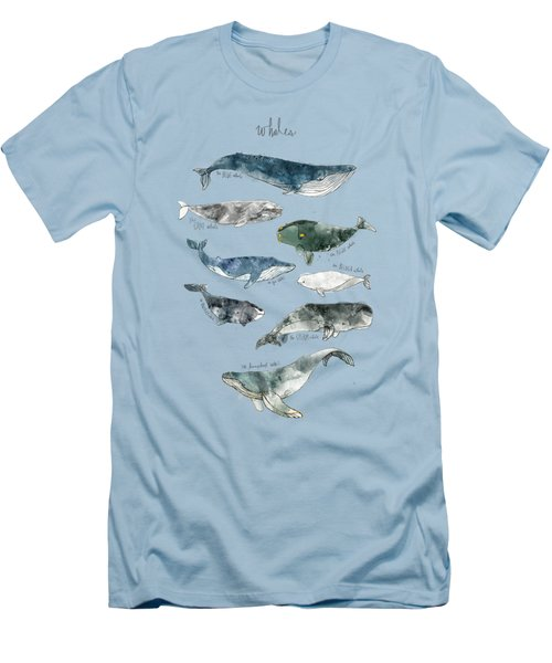 Whales Men's T-Shirt (Slim Fit) by Amy Hamilton