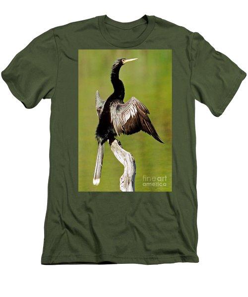 Anhinga Anhinga Anhinga Drying Plumage Men's T-Shirt (Slim Fit) by Millard H. Sharp