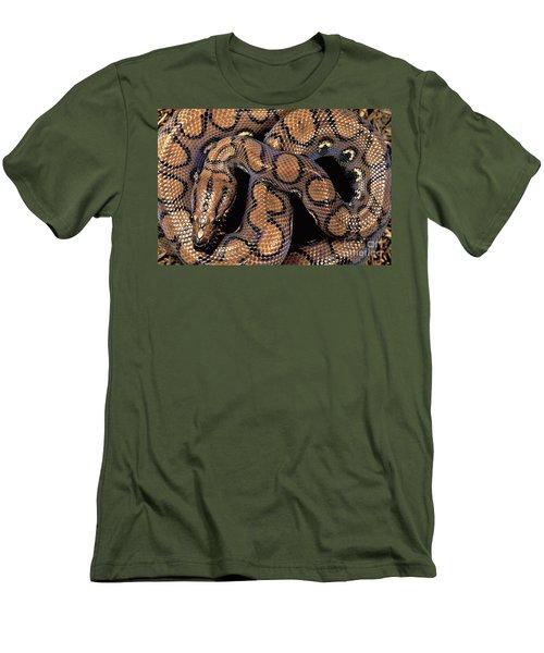 Brazilian Rainbow Boa Men's T-Shirt (Slim Fit) by Art Wolfe