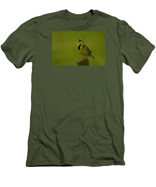 The Meadowlark Sings Men's T-Shirt (Slim Fit) by Jeff Swan