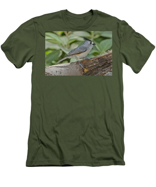 Black-crested Titmouse Men's T-Shirt (Slim Fit) by Anthony Mercieca