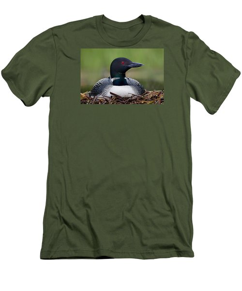 Common Loon On Nest British Columbia Men's T-Shirt (Slim Fit) by Connor Stefanison