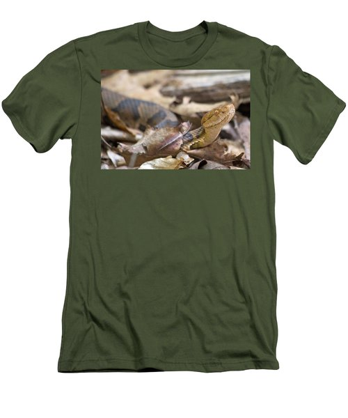 Copperhead In The Wild Men's T-Shirt (Slim Fit) by Betsy Knapp