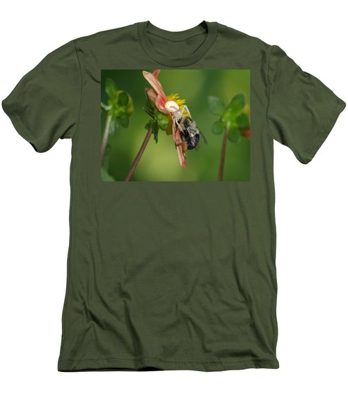 Goldenrod Spider Men's T-Shirt (Slim Fit) by James Peterson