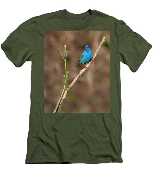 Indigo Bunting Portrait Men's T-Shirt (Slim Fit) by Bill Wakeley