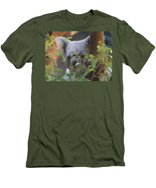 Koala Bear  Men's T-Shirt (Slim Fit) by Dan Sproul
