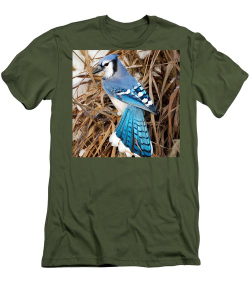 Portrait Of A Blue Jay Square Men's T-Shirt (Slim Fit) by Bill Wakeley