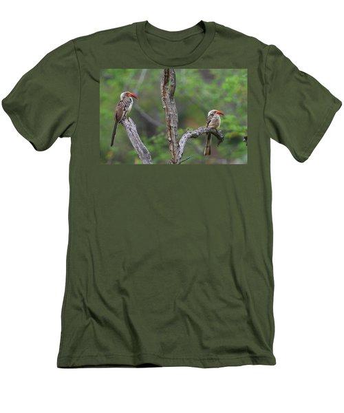 Red-billed Hornbills Men's T-Shirt (Slim Fit) by Bruce J Robinson