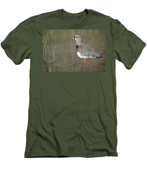 Southern Lapwing In Marshland Pantanal Men's T-Shirt (Slim Fit) by Tui De Roy