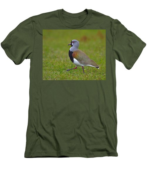 Strutting Lapwing Men's T-Shirt (Slim Fit) by Tony Beck