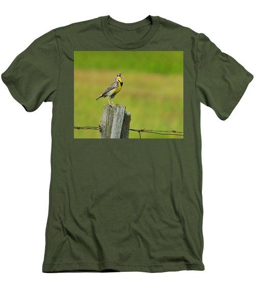 Western Meadowlark Men's T-Shirt (Slim Fit) by Tony Beck