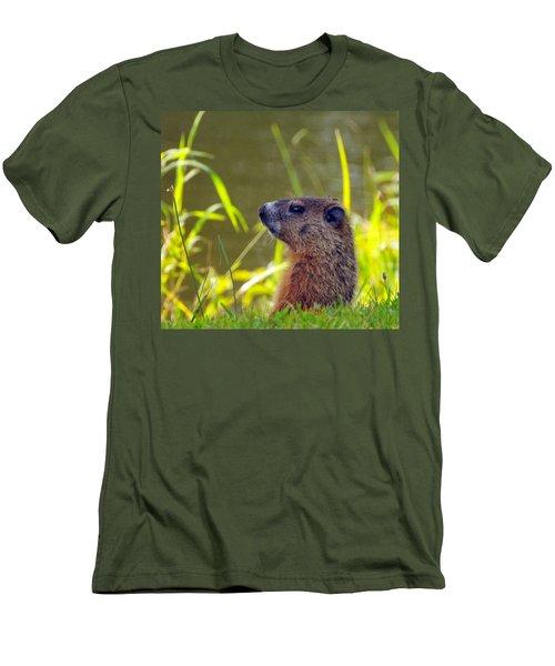Chucky Woodchuck Men's T-Shirt (Slim Fit) by Paul Ward