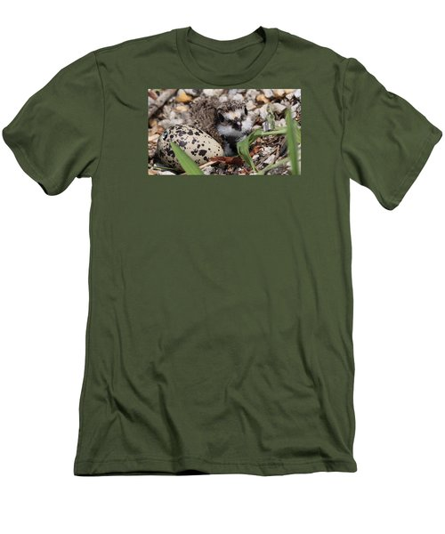 Killdeer Baby - Photo 25 Men's T-Shirt (Slim Fit) by Travis Truelove