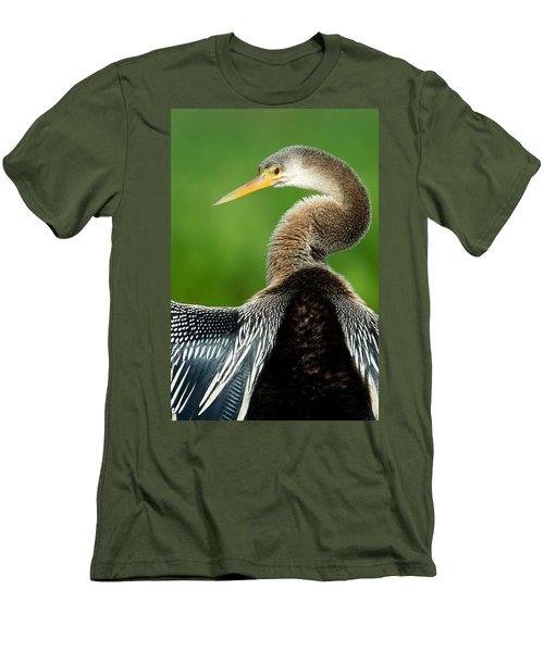 Anhinga Anhinga Anhinga, Pantanal Men's T-Shirt (Slim Fit) by Panoramic Images
