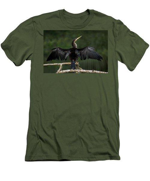 Anhinga Anhinga Anhinga Perching Men's T-Shirt (Slim Fit) by Panoramic Images