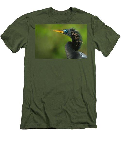Anhinga Anhinga Anhinga, Tortuguero Men's T-Shirt (Slim Fit) by Panoramic Images