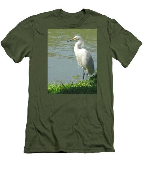 Bird Men's T-Shirt (Slim Fit) by Sandy Taylor