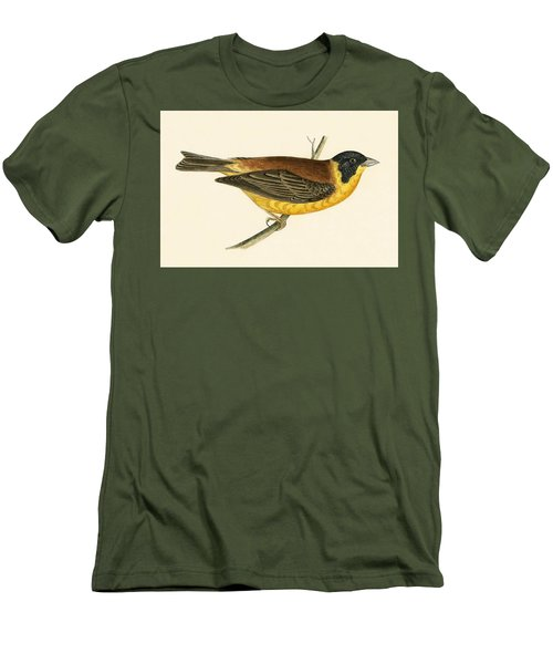 Black Headed Bunting Men's T-Shirt (Slim Fit) by English School