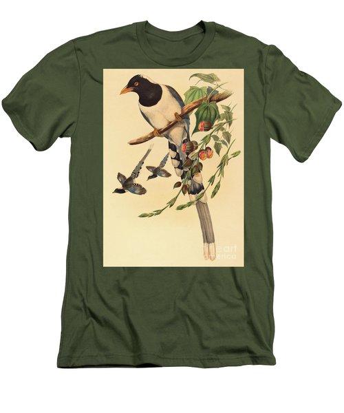 Blue Magpie, Urocissa Magnirostris Men's T-Shirt (Slim Fit) by John Gould