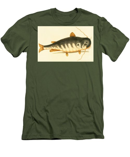 Catfish Men's T-Shirt (Slim Fit) by Mark Catesby