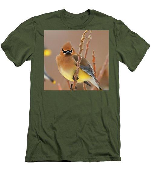 Cedar Wax Wing Men's T-Shirt (Slim Fit) by Carl Shaw