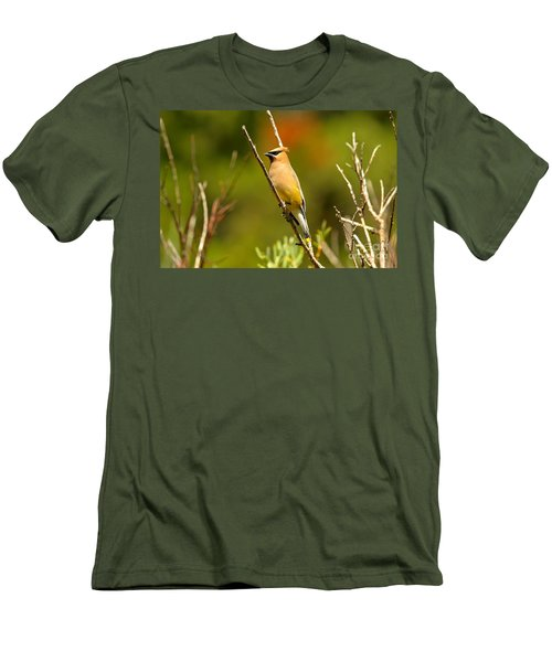 Fishercap Cedar Waxwing Men's T-Shirt (Slim Fit) by Adam Jewell