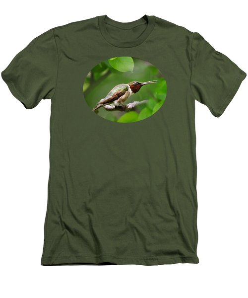 Hummingbird Hiding In Tree Men's T-Shirt (Slim Fit) by Christina Rollo