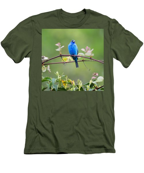 Indigo Bunting Perched Square Men's T-Shirt (Slim Fit) by Bill Wakeley