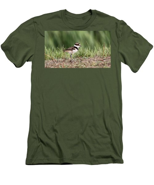 Killdeer - 24 Hours Old Men's T-Shirt (Slim Fit) by Travis Truelove