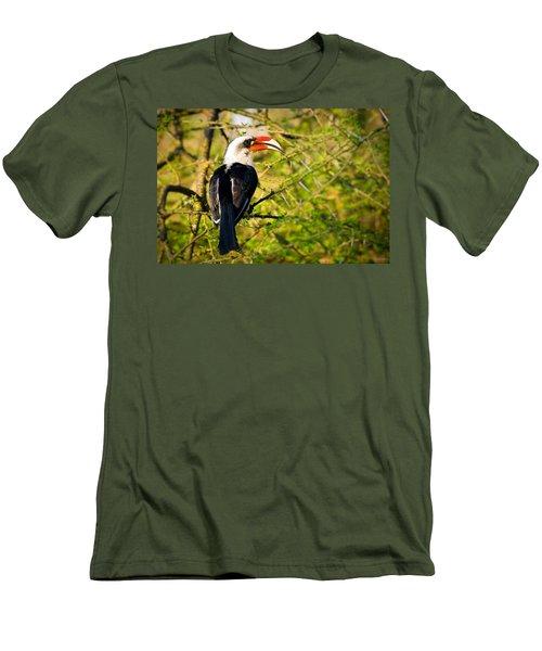Male Von Der Decken's Hornbill Men's T-Shirt (Slim Fit) by Adam Romanowicz