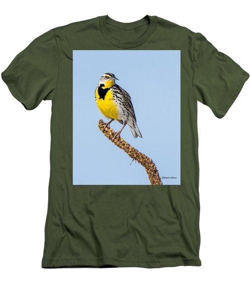 Meadowlark On Mullein Stalk Men's T-Shirt (Slim Fit) by Stephen Johnson