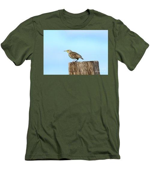 Meadowlark Roost Men's T-Shirt (Slim Fit) by Mike Dawson