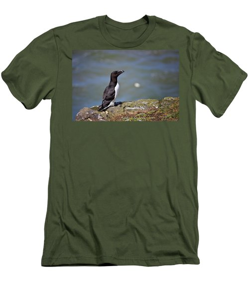 Razorbill Men's T-Shirt (Slim Fit) by Vicki Field