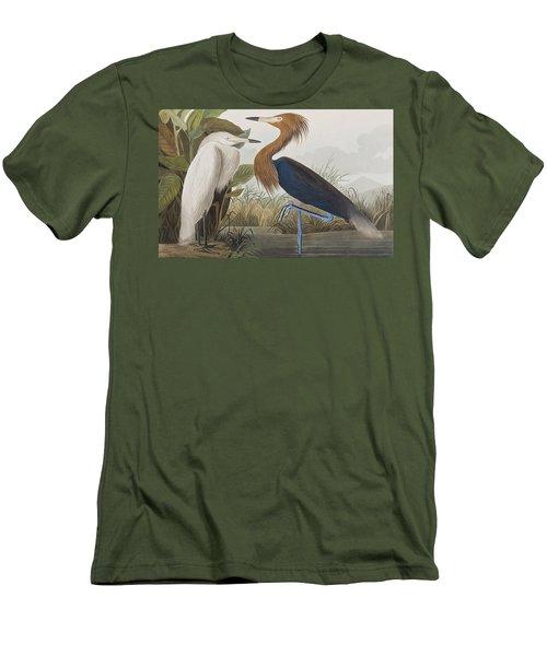 Reddish Egret Men's T-Shirt (Slim Fit) by John James Audubon