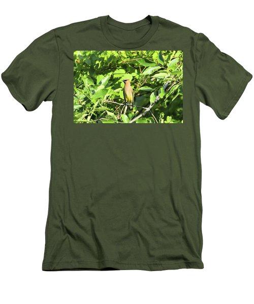 Sitting Pretty Men's T-Shirt (Slim Fit) by David Stasiak