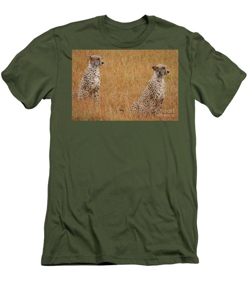 The Cheetahs Men's T-Shirt (Slim Fit) by Stephen Smith