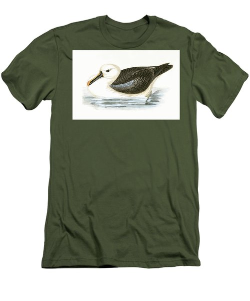 Yellow Nosed Albatross Men's T-Shirt (Slim Fit) by English School
