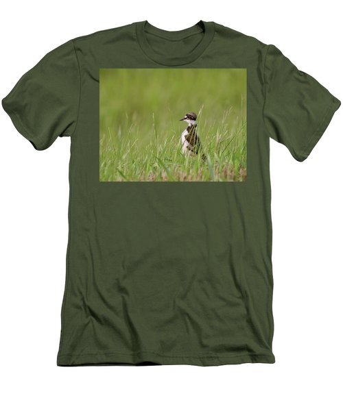 Young Killdeer In Grass Men's T-Shirt (Slim Fit) by Mark Duffy