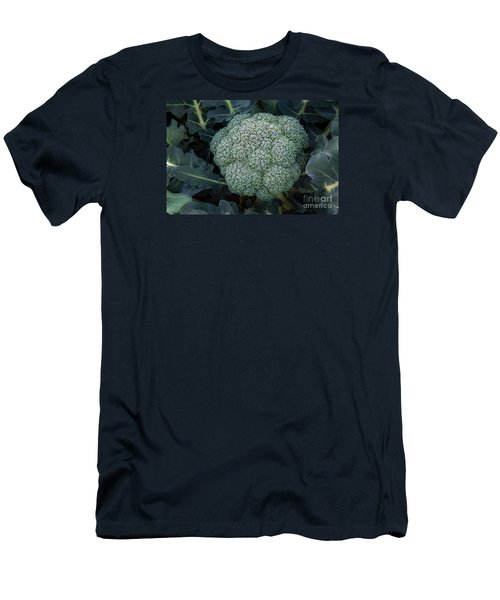 Broccoli Men's T-Shirt (Slim Fit) by Robert Bales