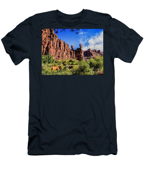 Private Home Canyon Dechelly Men's T-Shirt (Slim Fit) by Bob and Nadine Johnston