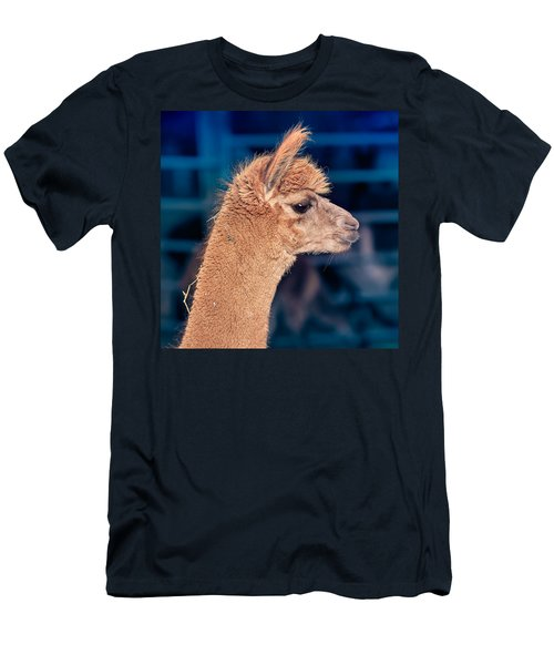 Alpaca Wants To Meet You Men's T-Shirt (Slim Fit) by TC Morgan