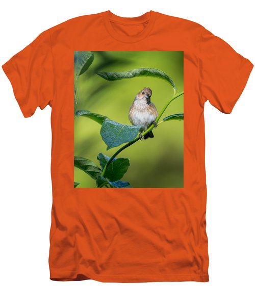 Indigo Bunting Female Men's T-Shirt (Slim Fit) by Bill Wakeley