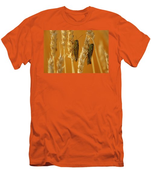 Grasshoppers On Wheat, Treherne Men's T-Shirt (Slim Fit) by Mike Grandmailson