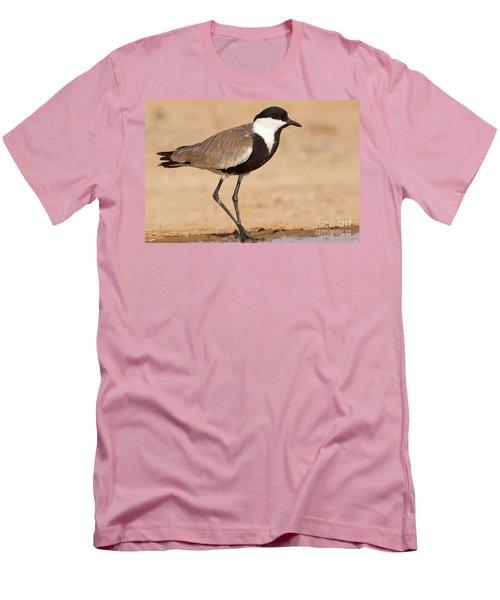 Spur-winged Lapwing Vanellus Spinosus Men's T-Shirt (Slim Fit) by Eyal Bartov